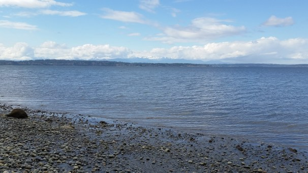 Puget Sound on the North Beach trail