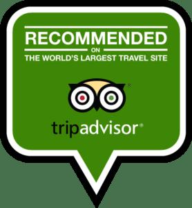 Tripadvisor Badge Tandem Flight