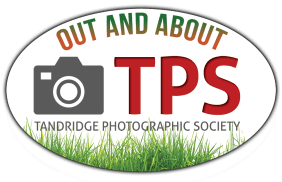 TPS Out and About logo