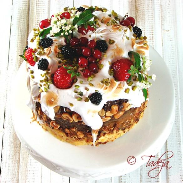 earth-cake