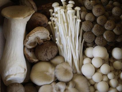 Mushrooms For My Sweet Potato Gnocchi