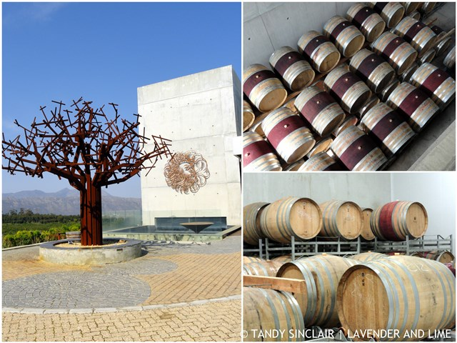 Wine Making At Waterkloof Wines Good Wine Takes Time