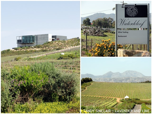 """Welcome To Waterkloof"""