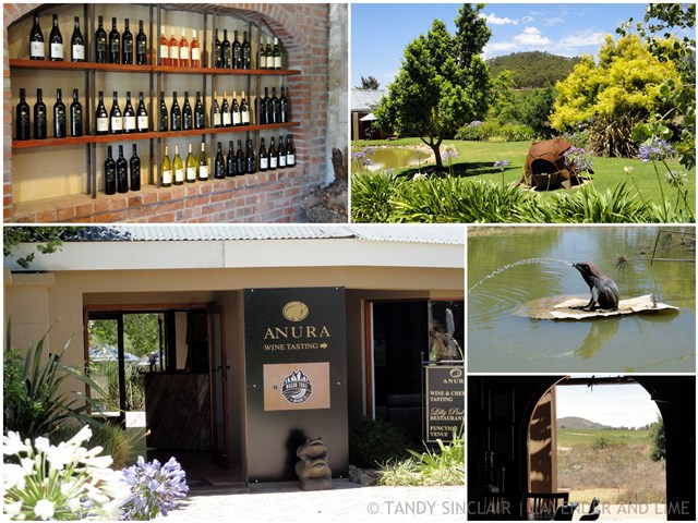 Wine Tasting At Anura, Stellenbosch