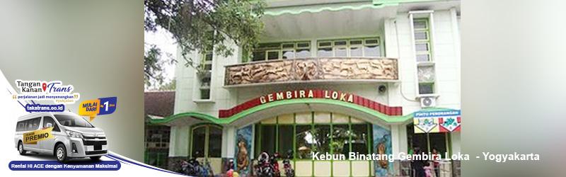 Sewa Hiace Jakarta Ke Kebun Binatang Gembiraloka Yogya
