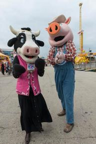 cow mask person