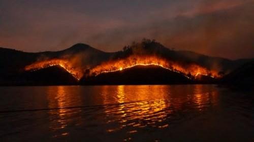 Incendie forestier mondial : faits et conséquences