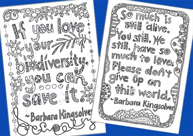 Two hand-lettered quotes, with a blue background. Imagery is by Tangerine Meg; quotes are from Barbara Kingsolver