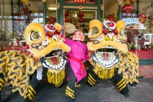 qvm-lion-dance-1