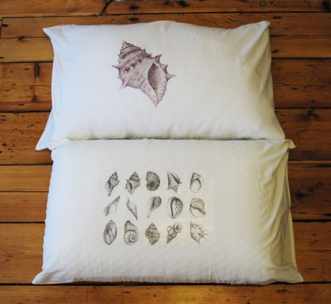 Shell cushions