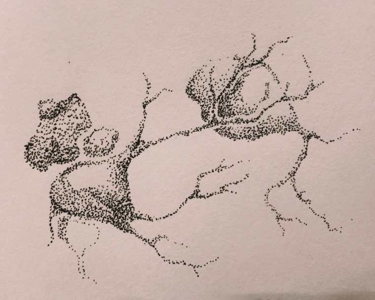 In this article, I write about my journey into fountain pens, which I am now learning to use to sketch and draw. As you will learn, my favored subjects are quite unique. Try doodling branches, cracks, and lines connected in simple angled patterns. If you're looking for something to draw, science has a ton of easy subjects you can try. black in stippling.