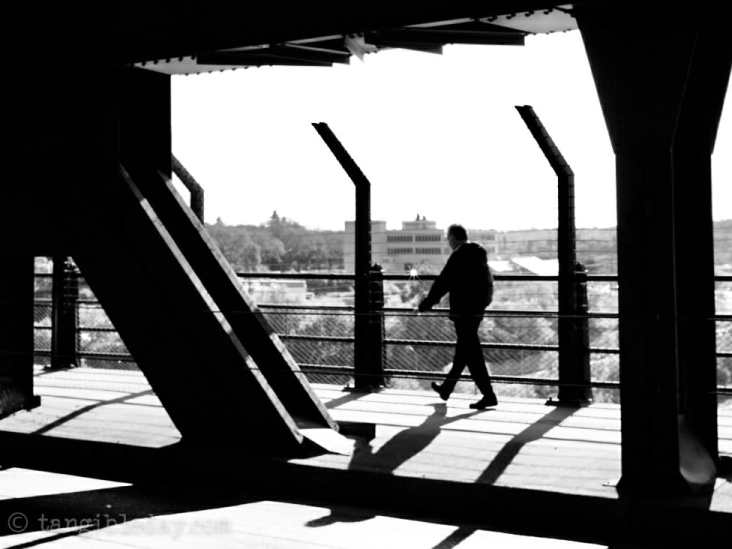 Black and White Photography: 40 Images with my 40mm Manual Lens