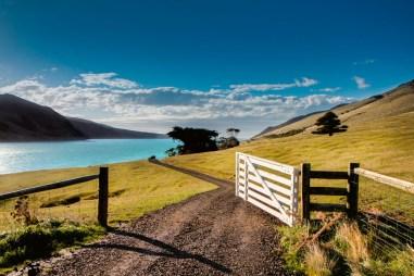 TANGO_online_hr-annandale-farm-gate