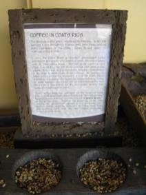 Coffee History (480x640)