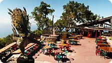 Nepenthe Terrace (by Tom Birmingham