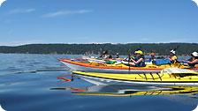 Kayakers returning to Cedar-by-the-Sea