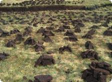 Drying the peat