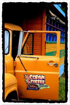 Copan Coffee Tours