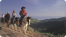 Circle B Bar Horseback Riding