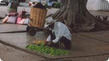 A man selling green chilis.