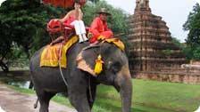 Ayutthaya elephant ride