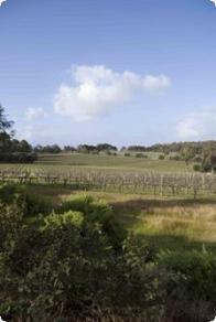 Deepwoods Winery