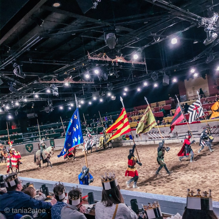Medieval Times dinner and tournament horses and knights