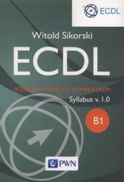 ECDL. Podstawy pracy z komputerem. Syllabus v.1.0 - ECDL. Podstawy pracy z komputerem. Syllabus v.1.0 - Witold Sikorski