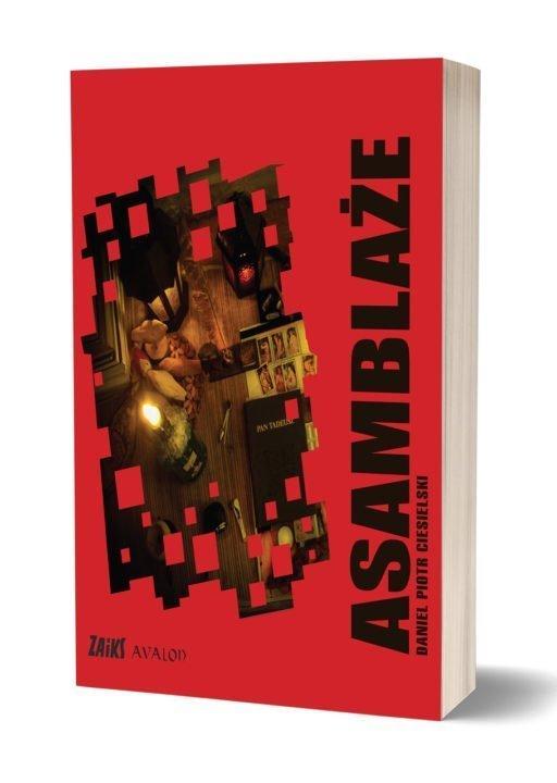 Asamblaze - AsamblażeDaniel Piotr Ciesielski