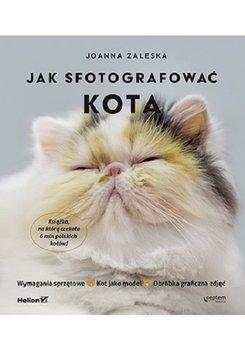 Jak fotografowac kota - Jak fotografować kotaJoanna Zaleska
