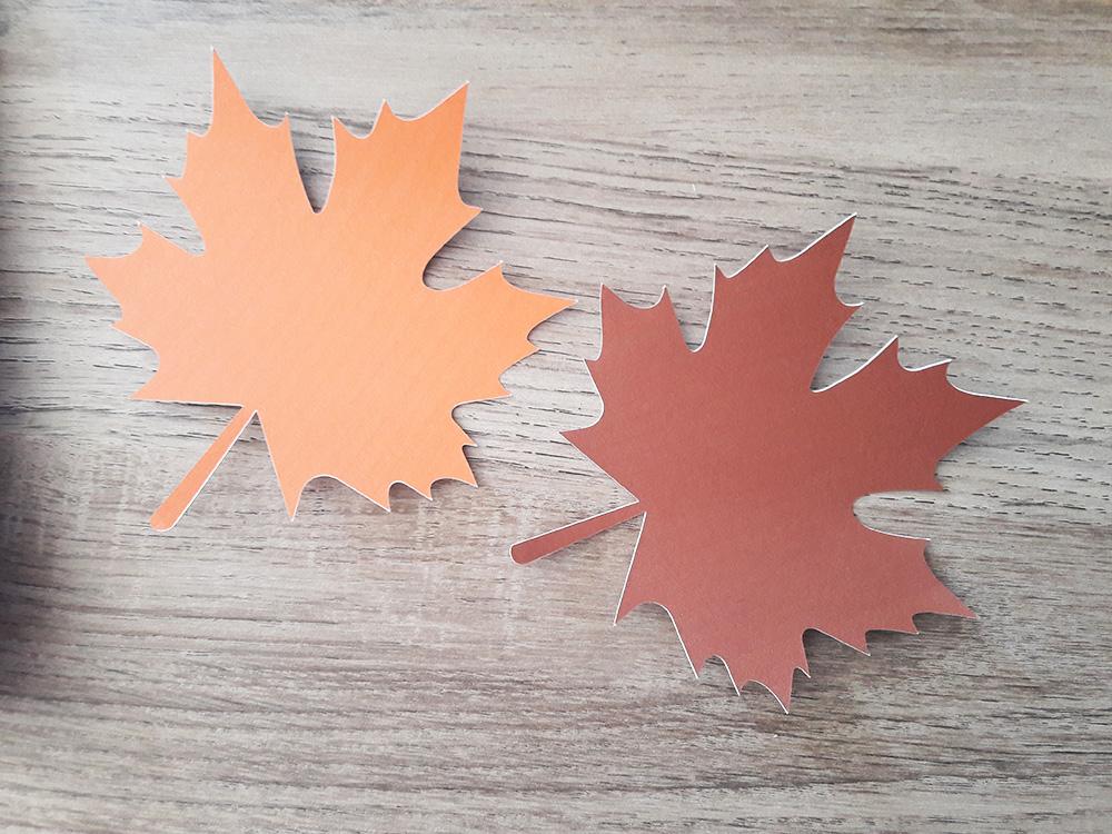 Silhouette - feuilles découpées