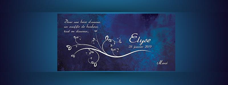 Remerciement Elyse