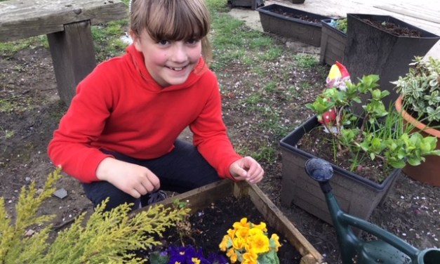 We love gardening