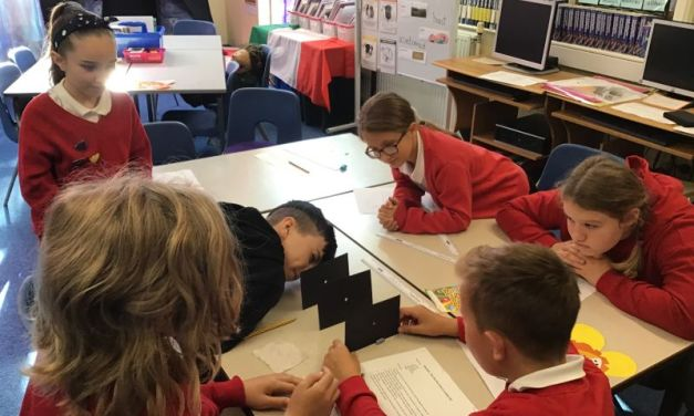 The Butterfly Lions have been investigating how light travels in a straight line…