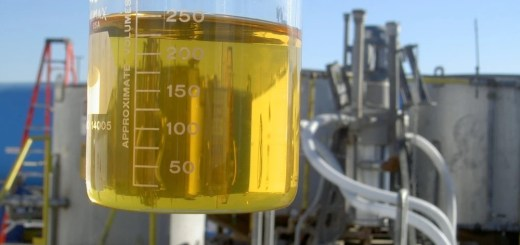 biodiesel plant w ethanol in beaker