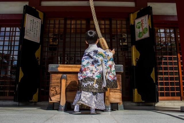 四国にいるなら初詣の「椿神社(椿さん)」は絶対はずせない!【初詣に行ってきた】