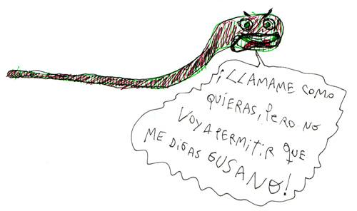 gusano