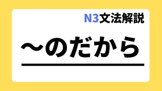N3文法解説「~のだから」