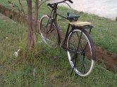 IMG-20120711-00643