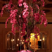 Enchanting Wedding Night at the Plaza Hotel New York City
