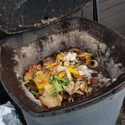 Kompostering i varmkompost
