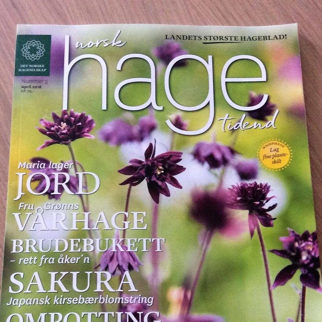 Artikkel om Fru Grønns vårhage i Norsk Hagetidend