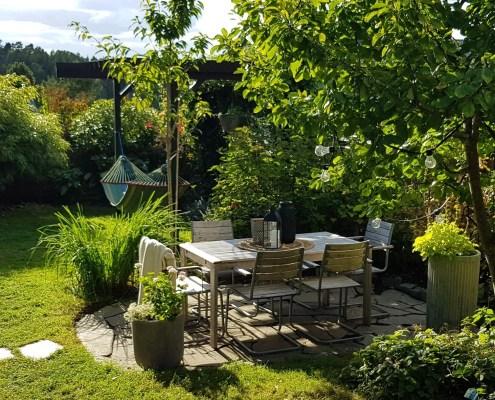 Sensommer og høst i tante Grønns hage
