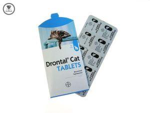 Contoh Obat Cacing untuk Kucing