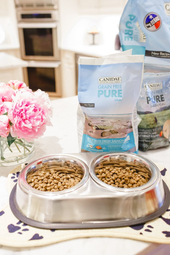 Canidae dog food, Sparky and Max Foster, tanya foster, petco, tanyafoster.com