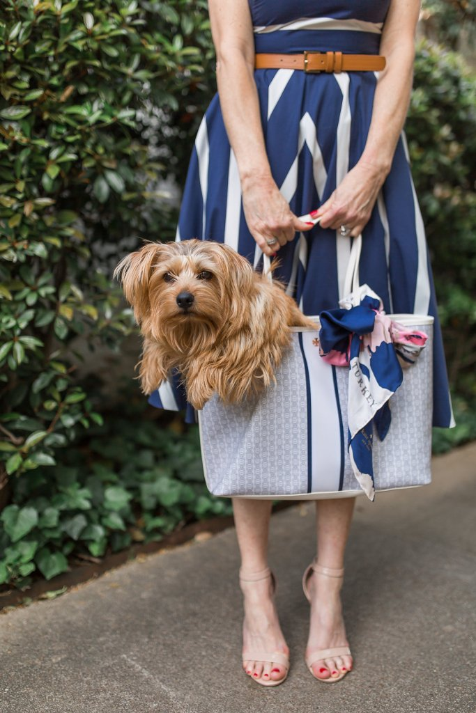 Striped Eliza J dress with Tory Burch tote from Nordstrom