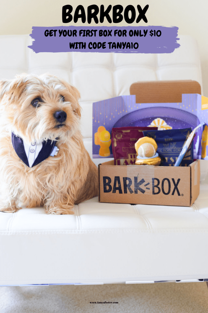 dog sitting with BarkBox subscription box