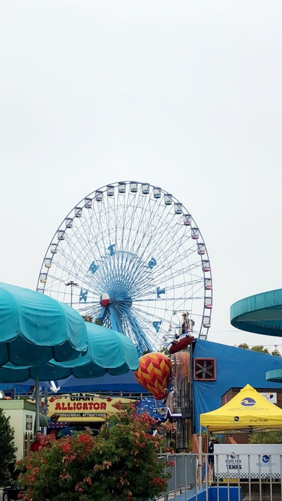 Tanya Foster visits the State Fair of Texas and tells us her 10 favorite things to do