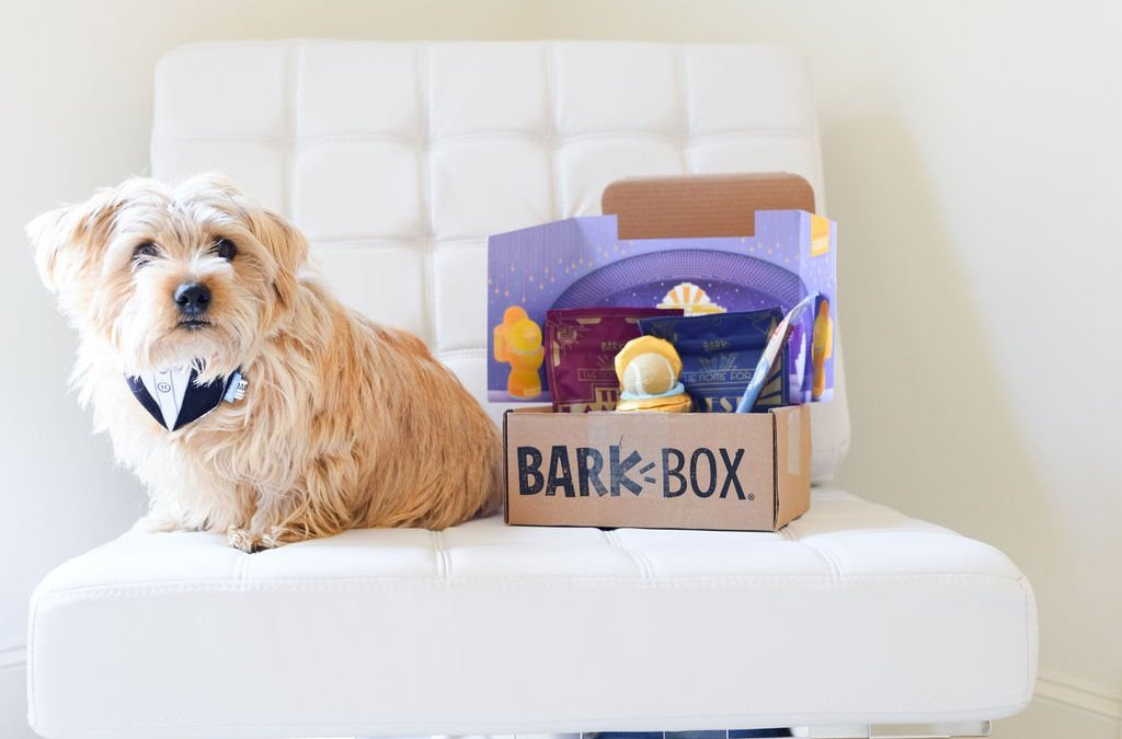 Why your dogs will love BarkBox!