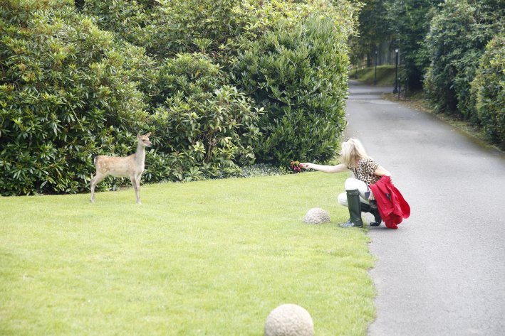 Waterford Castle in Ireland | 8 Reasons to travel to Ireland now! by popular Dallas travel blogger, Tanya Foster: image of a woman trying to feed a deer at the Waterford Castle.